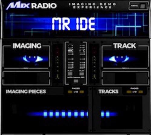 Mr. Ide.